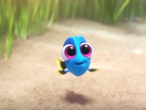 Mira a la pececita azul 'Dory' cuando era una bebé