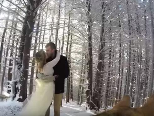 Perro graba el matrimonio de sus amos