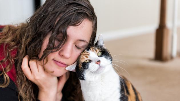 Conoce las alegrías y dificultades de adoptar una mascota en pareja