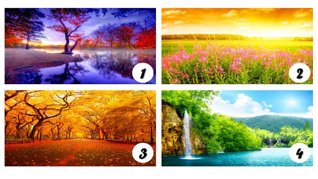 ¡Descubre rasgos de tu personalidad escogiendo el paisaje que más te guste de la imagen!