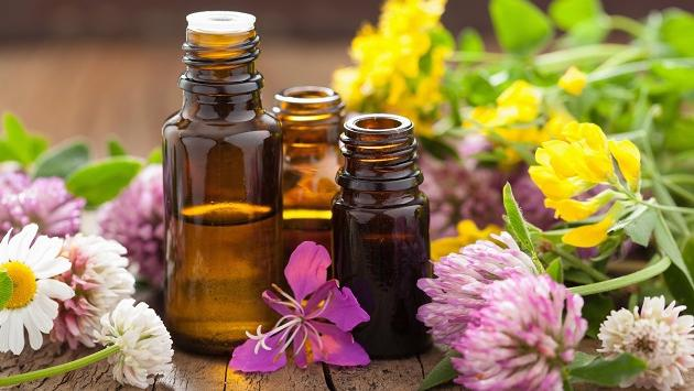 Como usar el aceite de rosa mosqueta