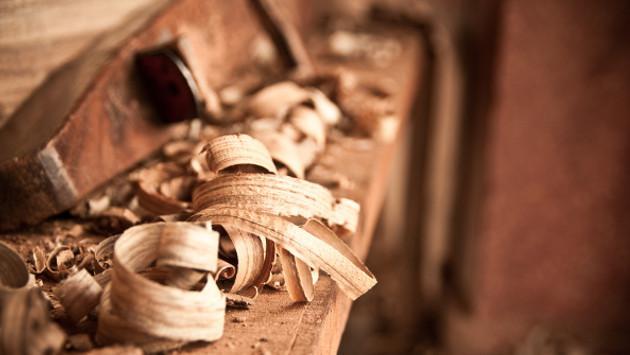El carpintero y su árbol de los problemas