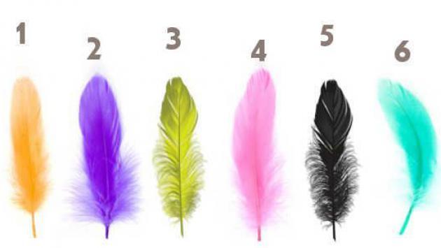 El test de las plumas revela tu personalidad