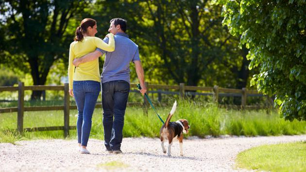 Tu relación podría terminar si no aceptas a la mascota de tu pareja