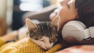 Estudio revela que las chicas duermen mejor acompañadas cuando descansan con sus mascotas