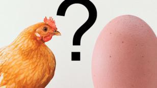 ¿Quién fue primero, el huevo o la gallina? Científico ya tiene la respuesta