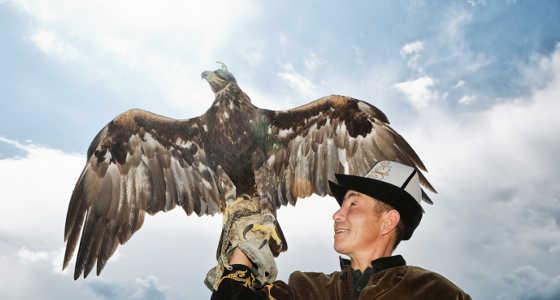 El consejo del águila