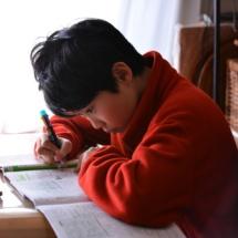 Tips para que su hijos hagan la tarea correctamente.