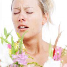 Infusión para las alergias respiratorias.