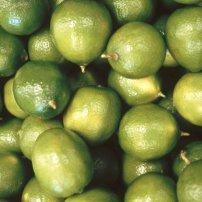 Descubre las bondades del Limón