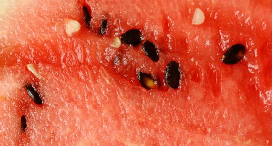 Semillas de sandía para la diabetes